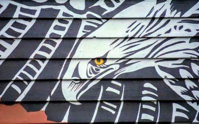 CBC: Urban Indigenous people forgotten in UNDRIP talks, say advocates